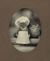 Mice Series #6 Framed Print