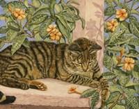 Caribbean Cat Fine Art Print