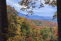 Window To The Smoky Mountains Fine Art Print