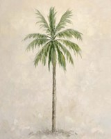 Palm Tree 1 Framed Print