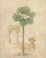 Palm With Architecture 2 Framed Print