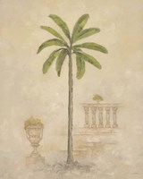 Palm With Architecture 3 Framed Print
