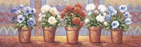 Row Of Flower Pots - A Framed Print