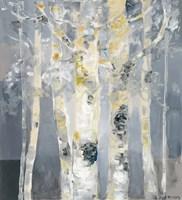 Forest at Dusk Fine Art Print