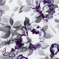 Scent of Roses Plum II Fine Art Print