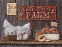 Fresh From The Farm Fine Art Print