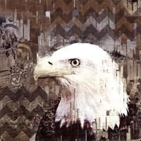 Call Of The Eagle Fine Art Print