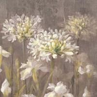Spring Blossoms Neutral IV Framed Print
