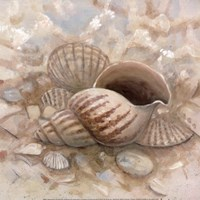Beach Prize I Fine Art Print