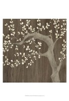 Driftwood Cherry II Framed Print