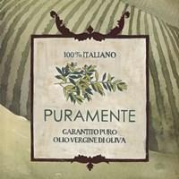 Olive Oil Labels III Framed Print