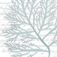 Aqua Marine VI Fine Art Print