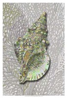 Hifi Triton II Framed Print