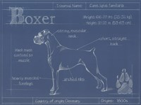 Blueprint Boxer Framed Print
