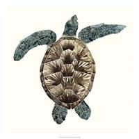Mosaic Turtle II Framed Print
