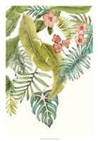 Soft Tropics II Fine Art Print