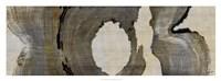 Cedar Round II Framed Print