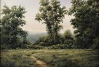 Vermont Meadow Fine Art Print