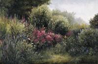 Field Of Flowers Fine Art Print