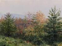 Autumn Morning Fine Art Print