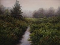 Meadow Brook, Arlington Fine Art Print