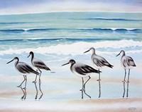 5 Birds Fine Art Print