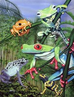 Tree Frogs Fine Art Print