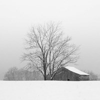 Townsend Winter I Fine Art Print