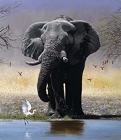 Elephant, Egret And Carmines Fine Art Print