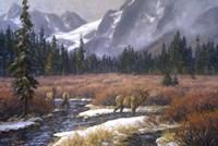 Autumn Into Winter Fine Art Print