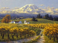 Autumn Vineyards Fine Art Print