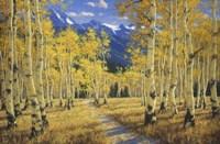 Autumn Symphony Fine Art Print