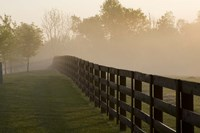 Morning Mist & Fence, Kentucky 08 Fine Art Print