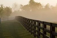 Morning Mist & Fence, Kentucky 08 Fine Art Print