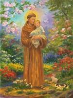 St. Francis Fine Art Print