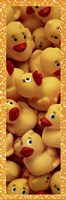 Duckies Galore Fine Art Print