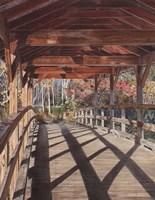 Over the River Fine Art Print