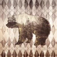 Wild Nature Bear Fine Art Print