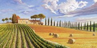 Colline Toscane Fine Art Print