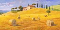 Colline in Toscana Fine Art Print