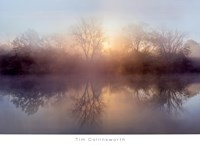 Morning Lake Fine Art Print