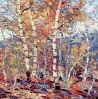 Birch Colors I Fine Art Print