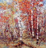 Birch Colors 3 Fine Art Print