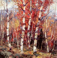 Birch Colors 4 Fine Art Print