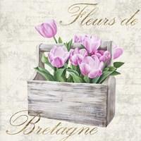 Fleurs de Bretagne Fine Art Print