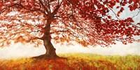 Red Leaves Fine Art Print