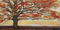 Red Oak Fine Art Print
