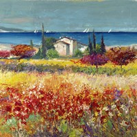 Sogno Mediterraneo (Detail) Fine Art Print