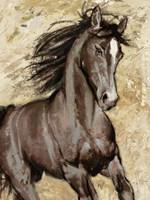 Maestoso Fine Art Print