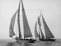 Sailboats Race during Yacht Club Cruise Framed Print